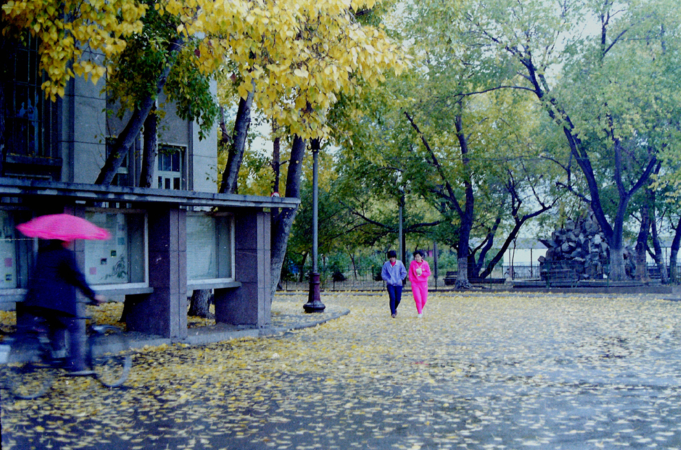 齐齐哈尔档案_【齐大影像志·改革开放40年】齐齐哈尔师范学院的老照片 ...